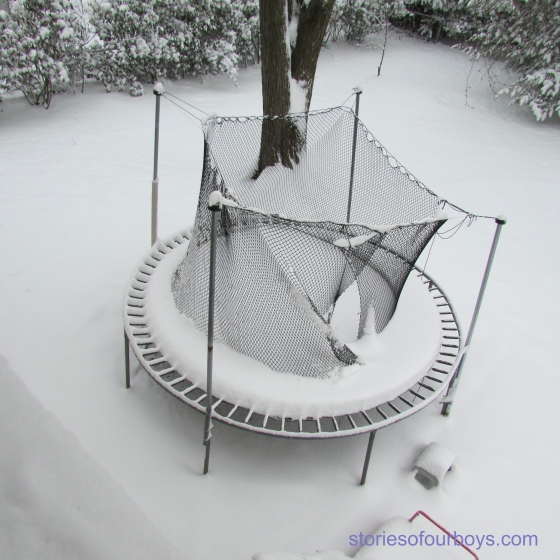 snowtrampoline14