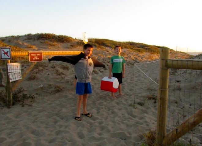 beachcooler